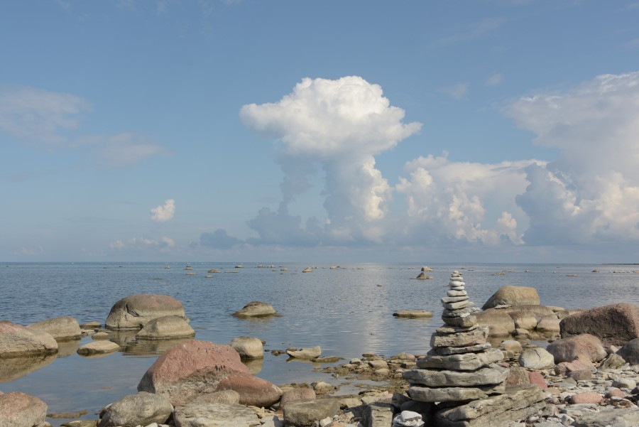 Saaremaa (Estland)