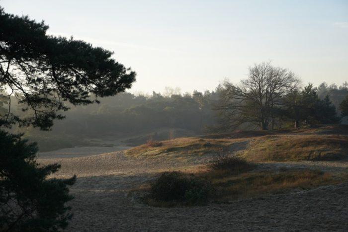 Soest - korte duinen